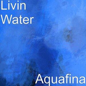 Livin Water 歌手頭像