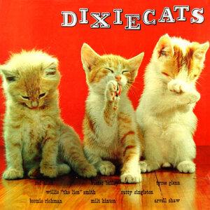 Dixiecats 歌手頭像