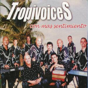 Tropivoices 歌手頭像