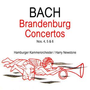 Hamburger Kammerorchester 歌手頭像