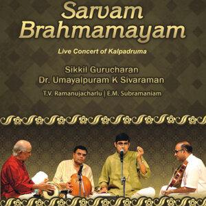 Sikkil Gurucharan & Umayalpuram K Sivaraman 歌手頭像