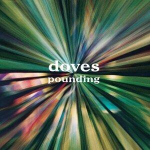 Doves (鴿子樂團) 歌手頭像