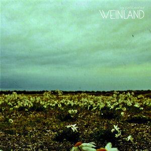 Weinland 歌手頭像