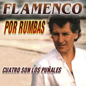 Miguel Cardenas 歌手頭像