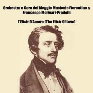 Orchestra e Coro del Maggio Musicale Fiorentino, Francesco Molinari-Pradelli 歌手頭像