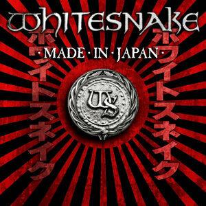 Whitesnake (白蛇合唱團) 歌手頭像