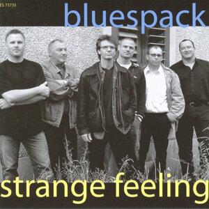 Bluespack 歌手頭像