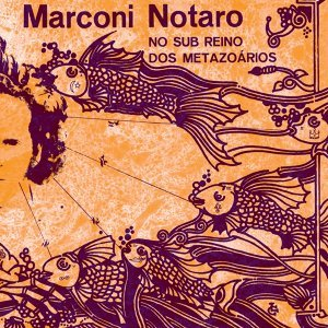 Marconi Notaro