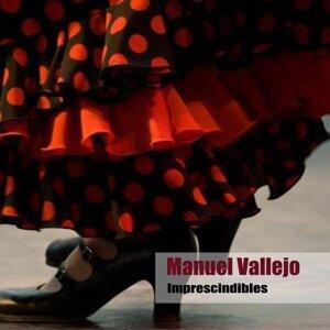Manuel Vallejo 歌手頭像