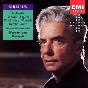 Berlin Philharmoniker (柏林愛樂管弦樂團) 歌手頭像