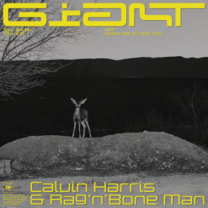 Calvin Harris, Rag'n'Bone Man Artist photo