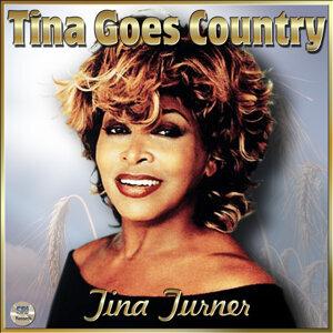 Tina Turner (蒂娜透娜) 歌手頭像