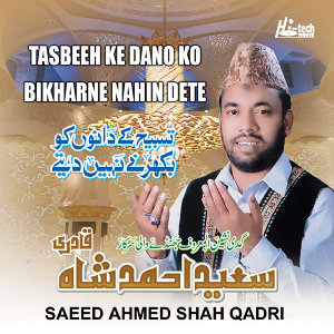 Saeed Ahmed Shah Qadri 歌手頭像