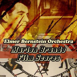 The Elmer Bernstein Orchestra 歌手頭像