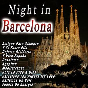 La Banda De Barcelona 歌手頭像