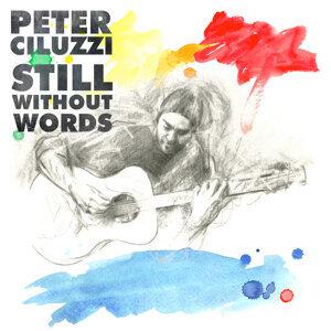 Peter Ciluzzi 歌手頭像