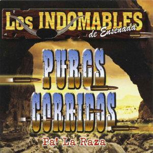 Los Indomables de Ensenada 歌手頭像