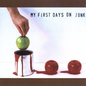 My First Days On Junk 歌手頭像