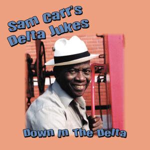Sam Carr's Delta Jukes 歌手頭像