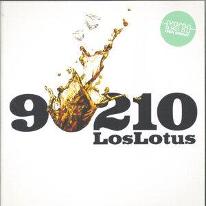 Los Lotus 歌手頭像