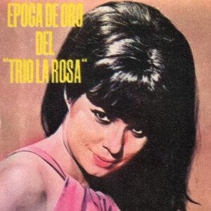 Trio La Rosa 歌手頭像