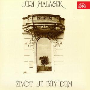 Jiri Malasek 歌手頭像