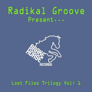 Radikal Groove 歌手頭像