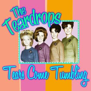 The Teardrops 歌手頭像