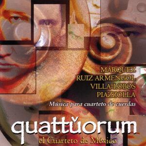 Quattuorum 歌手頭像