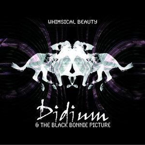 Didium & The Black Bonnie Picture