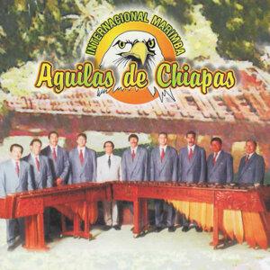 Internacional Marimba Aguilas de Chiapas 歌手頭像