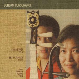 Yang Wei / Betti Xiang / Amelia Piano Trio 歌手頭像