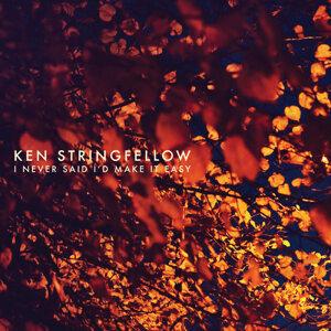 Ken Stringfellow 歌手頭像
