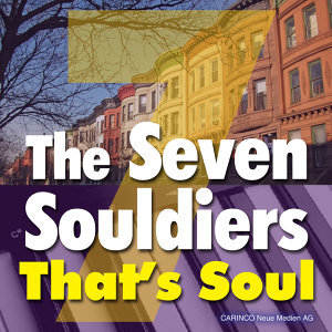 The Seven Souldiers