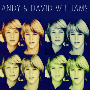 Andy & David Williams 歌手頭像