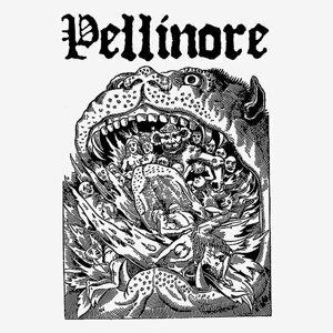 Pellinore 歌手頭像