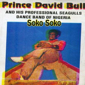 Prince David Bull