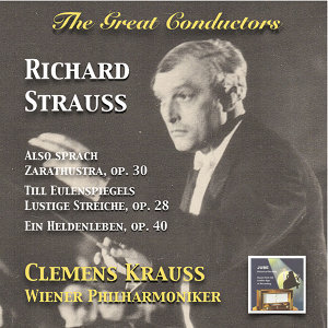 Wiener Philharmoniker (維也納愛樂管弦樂團) 歌手頭像