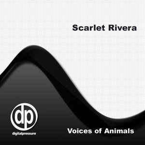 Scarlet Rivera 歌手頭像