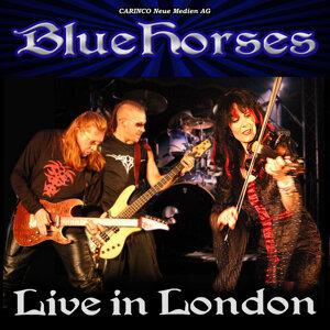 Bluehorses 歌手頭像