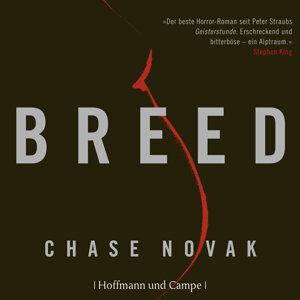 Chase Novak 歌手頭像