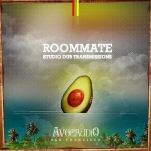 Roommate 歌手頭像