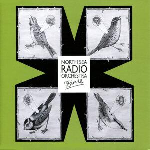 North Sea Radio 歌手頭像