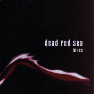 Dead Red Sea 歌手頭像