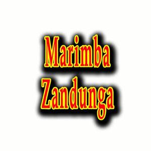 Marimba Zandunga 歌手頭像