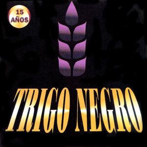 Trigo Negro 歌手頭像