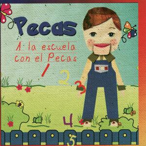 Pecas 歌手頭像