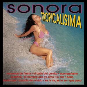 Sonora Tropicalisma 歌手頭像