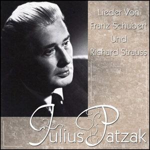 Julius Patzak 歌手頭像