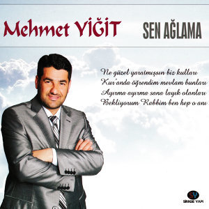 Mehmet Yiğit 歌手頭像